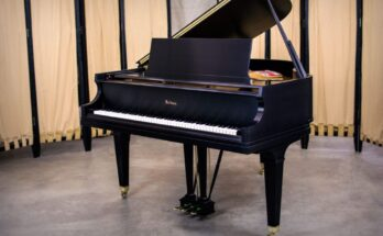 Piano removel