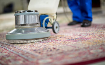 How to Select a Rug Carpet Cleaning Services for your Home